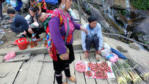 Cao Son Market and Local Hilltribe Village Day Trip from Sapa, Hanoi, null