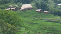 Cultural walks and overnight in remote minority village, Hanoi, Overnight Tours