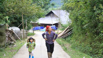 Half-Day Tour of Hoang Lien National Park and Sin Chai Village from Sapa, Hanoi, null