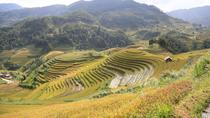 Muong Hoa Valley y Ban Ho Village de Hanoi, Hanoi, Walking Tours