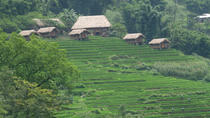 The Hidden Trail of Muong Hoa Valley Half-Day Tour from Sapa, Northern Vietnam, Half-day Tours