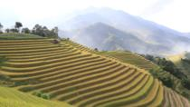 Trek through Hoang Lien National Park to Ban Ho valley, Hanoi, Hiking & Camping