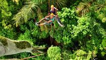 Treetop Climbing in Manaus, Manaus