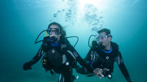 Dive the Atlantic Ocean From Panama, Panama City, Scuba Diving