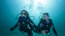 Drake Island and Wreck of B-45 Airplane Experience for Certificate Divers, Panama City, Scuba Diving
