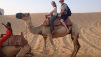 Abu Dhabi Evening Desert Safari With Belly Dance BBQ Dinner Camel Ride Sand Boarding and Dune ...