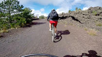 Mountain Bike Tour on Mount Etna, Catania