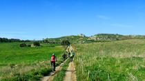 Mountain Bike Tour on the Banks of the Simeto river, Catania, Bike & Mountain Bike Tours