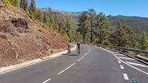 Teide South Cycling Tour in Tenerife, Tenerife