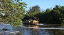 Pantanal Carioca Sightseeing Boat Tour with Optional Lunch, リオデジャネイロ
