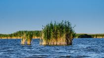 2-Day Tour - The Danube Delta & Black Sea, Bucharest, Multi-day Tours