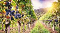 Romanian Wine Tasting, Bucharest, Wine Tasting & Winery Tours
