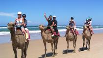 Agadir 2-Hour Camel Ride, Agadir, Nature & Wildlife