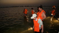 Crab Hunting in the Mangroves, Dubai, Fishing Charters & Tours