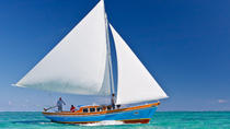 Hol Chan Marine Reserve and Shark Ray Alley Sailing and Snorkeling Tour, Ambergris Caye, Sailing ...