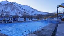 Kamchatka DayTour: Paratunka Hot Springs, Moscow, Private Sightseeing Tours