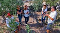 Olive Oil Tour of Solta Island with Lunch, Split, null
