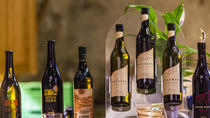 Lucerne & Wine Tasting Tour with Snacks included, Lucerne, Wine Tasting & Winery Tours