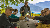 Lucerne Wine Tasting and boat Tour visiting a Traditional Winery, Zurich, Wine Tasting & Winery ...