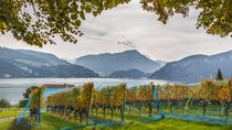 Lucerne Wine Tasting Tour by Lake Lucerne in a Traditional Winery, Zurich, Wine Tasting & Winery ...