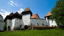2-Day Small-Group Tour to Dracula's Castle, Rasnov Fortress, Peles Castle, Sighisoara and Libearty ...