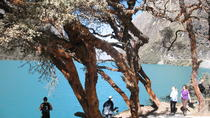 Llanganuco Full Day Tour, Huaraz, Day Trips