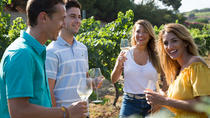 Boutique Wineries Wine and Tapas Small Group Tour , Barcelona, Wine Tasting & Winery Tours