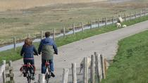 Texel bike tour, Amsterdam, Bike & Mountain Bike Tours