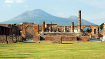 Pompeii and Vesuvius Bus Tour from Sorrento, Sorrento, Ports of Call Tours