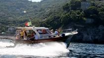 Positano and Amalfi Coast Boat Tour from Sorrento, Sorrento, Day Cruises