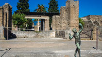 Private Pompeii and Herculaneum from Sorrento, Sorrento, Private Sightseeing Tours