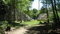 Full-Day Caracol Maya Temple and Pine Ridge Forest Reserve, San Ignacio, Private Sightseeing Tours