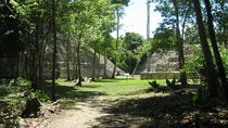 Full-Day Exploration of the Caracol Maya Temple, San Ignacio, Private Sightseeing Tours