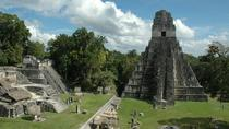 Private Tikal Maya City Tour Including Lunch, San Ignacio, Archaeology Tours