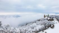 1-day Hiking on Snow-capped Hangzhou Longwang Mountain, Hangzhou, Hiking & Camping