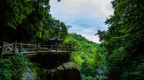 Small Group Hiking Day Tour on Mount Mogan from Hangzhou, Hangzhou, Hiking & Camping