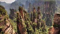 Private Day Trip of Zhangjiajie National Forest Park, Tianzi Mountain and Helong Park, Zhangjiajie,...