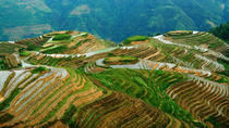 All Inclusive Private Day Tour of Longji Rice Terraces and Minority Village, Guilin, Private ...