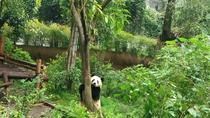 All-Inclusive Private Day Tour of Panda Holding Experience in Chengdu, Chengdu, Cultural Tours