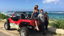 North Shore Oahu Dune Buggy Driving Full Day Tour, Oahu, Full-day Tours