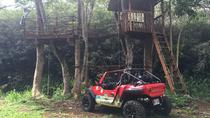 Off Road Dune Buggy Tour, Oahu, 4WD, ATV & Off-Road Tours