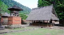 Oriental Eastern Bali Tour, Ubud, Nature & Wildlife