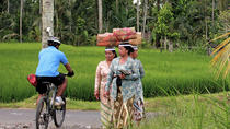 Bali Adventure Mountain Bike Tour, Bali, Walking Tours