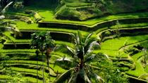 Bali Full-Day Traditional Village Sightseeing Trip with Lunch, Bali
