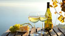 Private Hamptons Tour and North Fork Long Island Wine Tastings, New York City, Day Trips