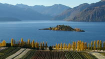 Wine Tour with Wine Tasting from Wanaka, Wanaka
