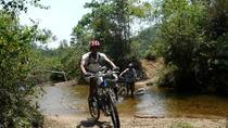 Mountain Bike Tour of Langbiang Mountain and Bidoup Nui Ba National Park, Central Vietnam, Bike &...
