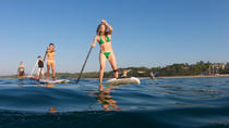 Stand Up Paddleboard Sightseeing Tour, Virginia Beach, Other Water Sports