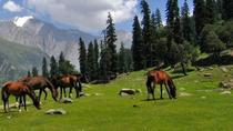 Full-Day Private Trip to Thajiwas Glacier and Zero Point from Srinagar, Srinagar, Private Tours