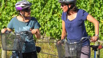 6-Hour Marlborough Wine Region Guided Bike Tour, Blenheim, Wine Tasting & Winery Tours
